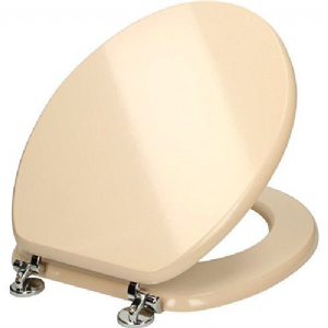 Matt Cream Toilet Seat